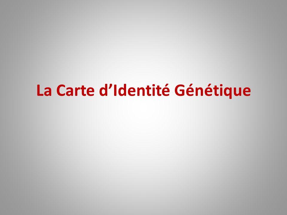 La Carte d'Identité Génétique