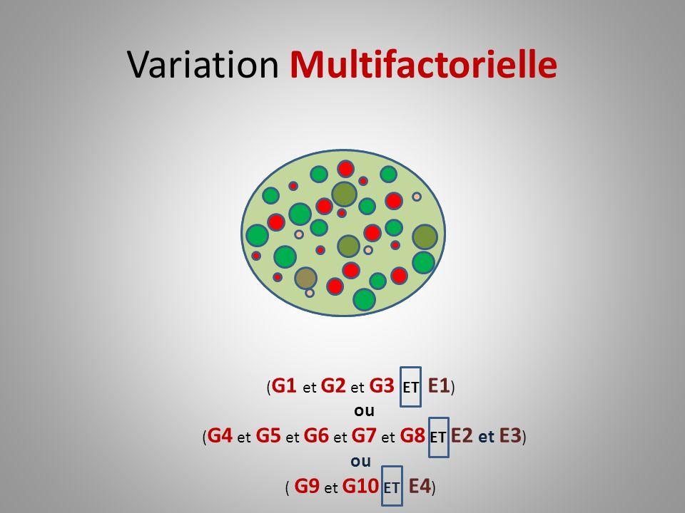 Variation Multifactorielle