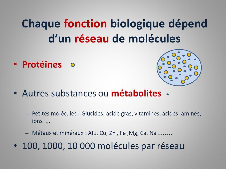 Chaque fonction biologique dépend d'un réseau de molécules