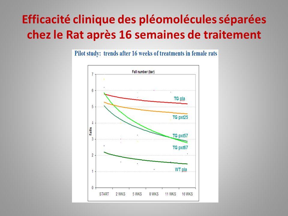 Efficacité clinique des pléomolécules séparées chez le Rat après 16 semaines de traitement