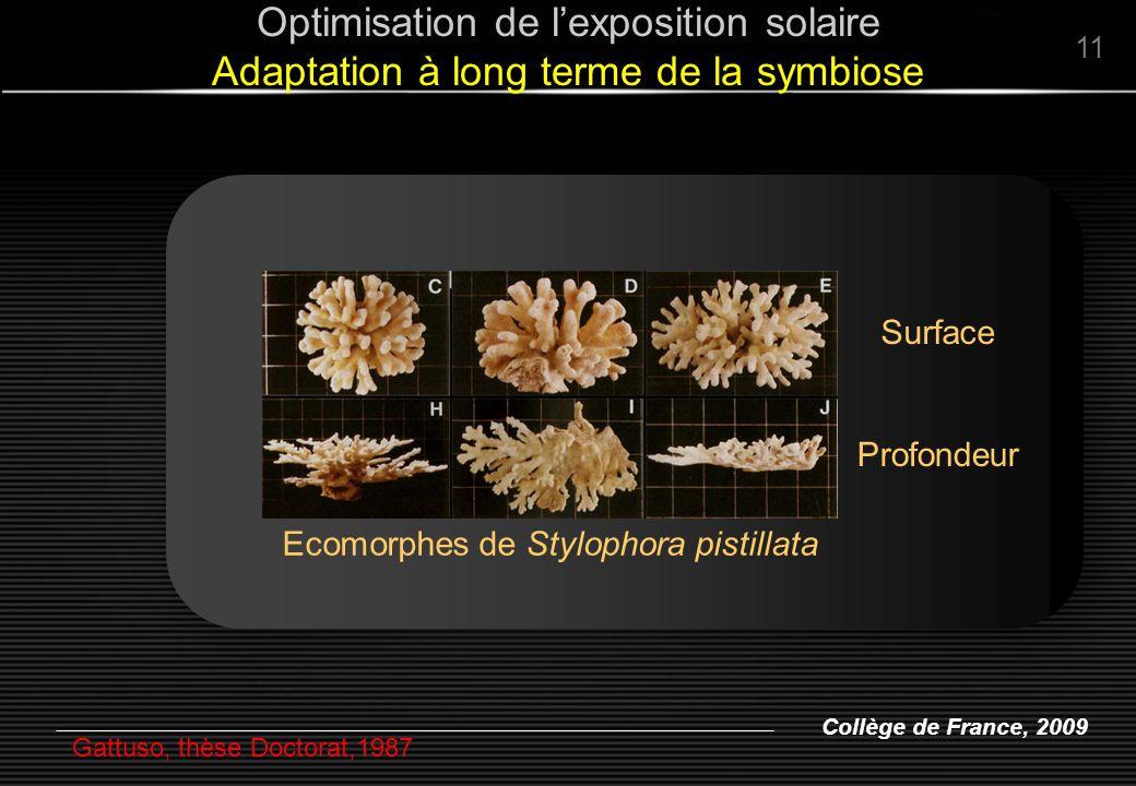 Optimisation de l'exposition solaire