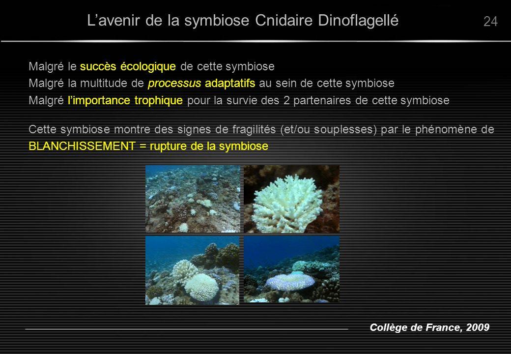 L'avenir de la symbiose Cnidaire Dinoflagellé