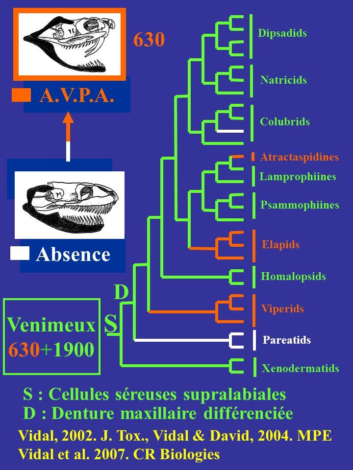 S D 630 A.V.P.A. Absence Venimeux 630+1900