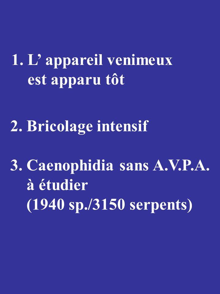 1. L' appareil venimeux est apparu tôt. 2. Bricolage intensif. 3. Caenophidia sans A.V.P.A. à étudier.