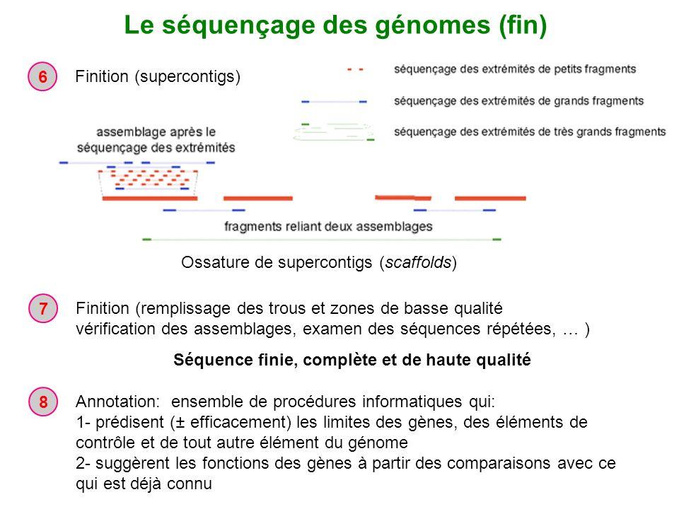 Le séquençage des génomes (fin)
