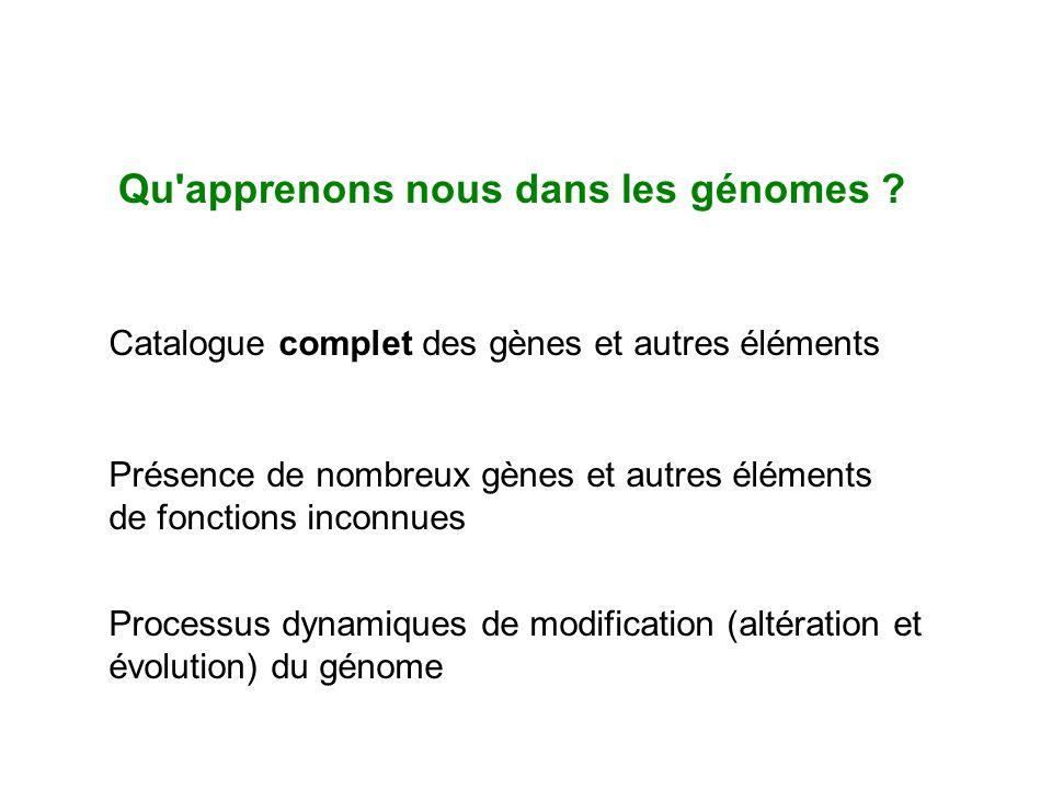 Qu apprenons nous dans les génomes