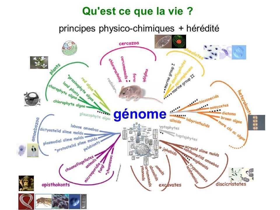 Qu est ce que la vie principes physico-chimiques + hérédité génome