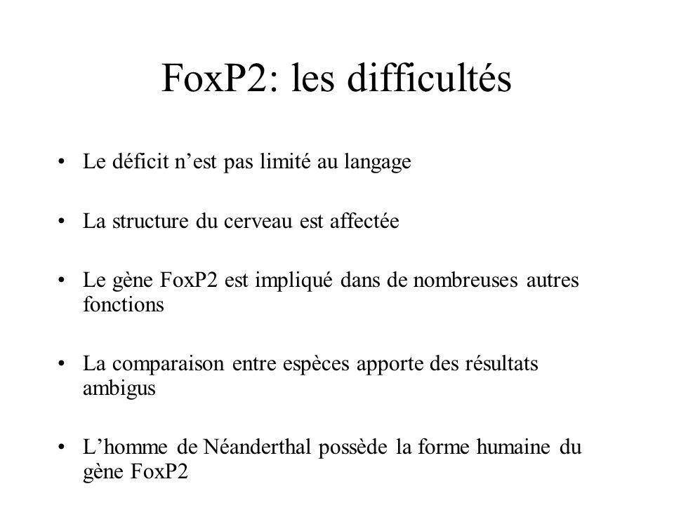 FoxP2: les difficultés Le déficit n'est pas limité au langage