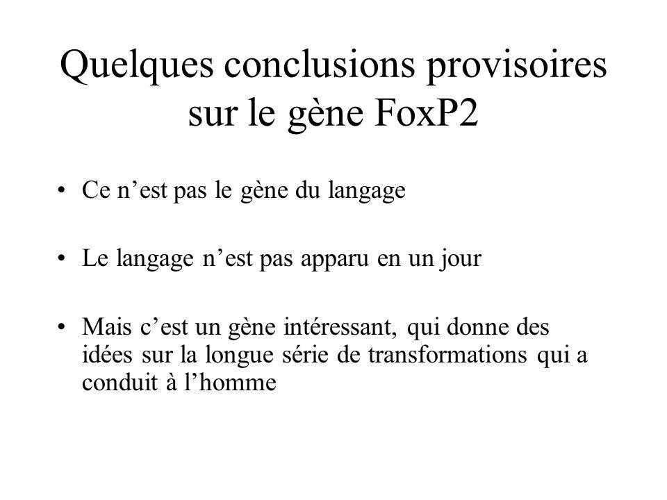 Quelques conclusions provisoires sur le gène FoxP2