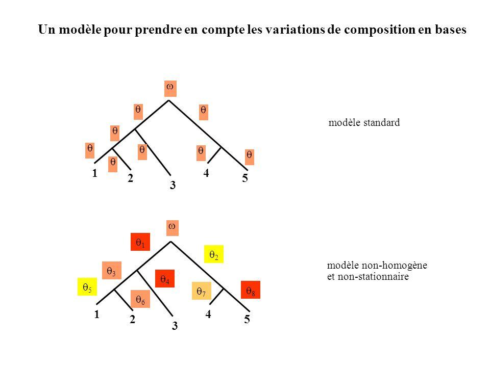 Un modèle pour prendre en compte les variations de composition en bases