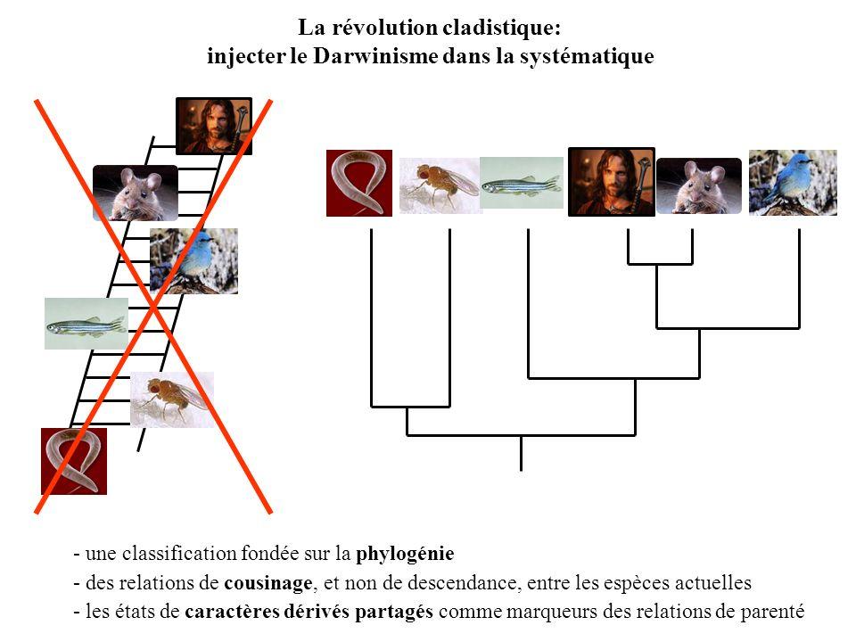 La révolution cladistique: injecter le Darwinisme dans la systématique