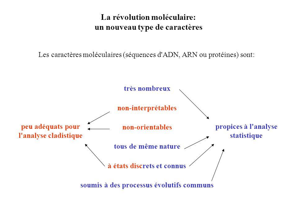 La révolution moléculaire: un nouveau type de caractères