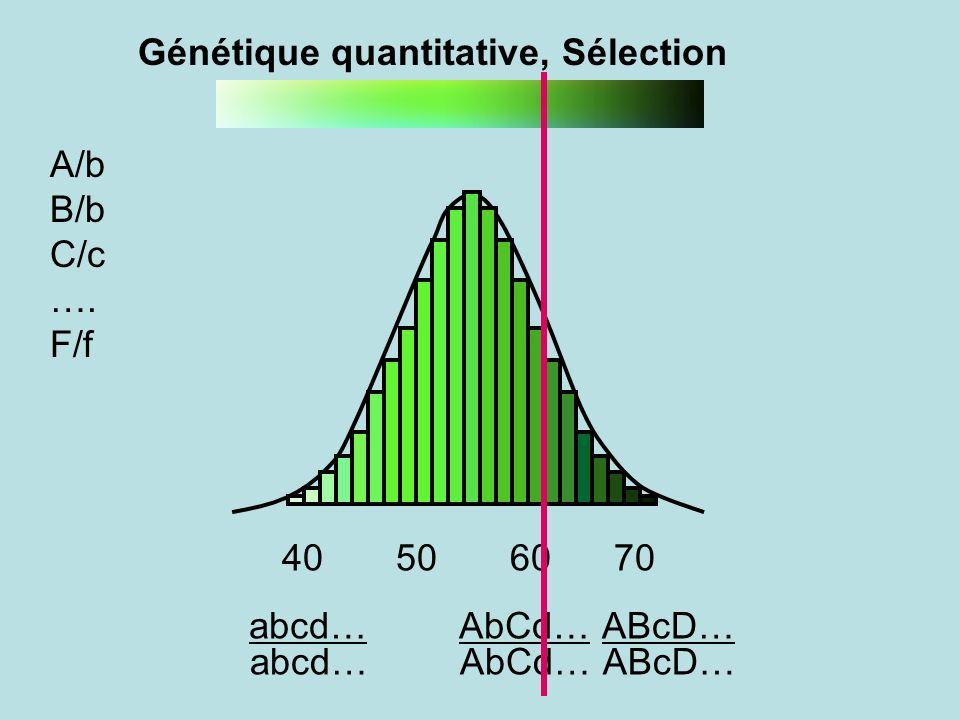 Génétique quantitative, Sélection