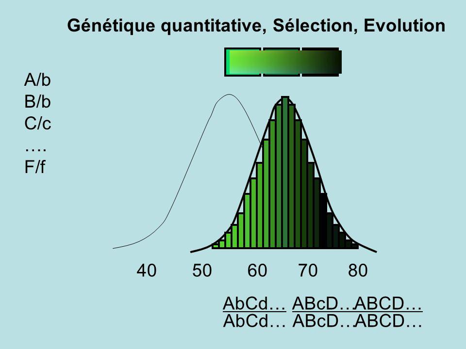 Génétique quantitative, Sélection, Evolution