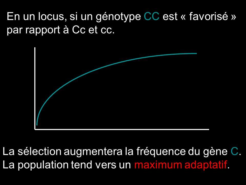 En un locus, si un génotype CC est « favorisé »
