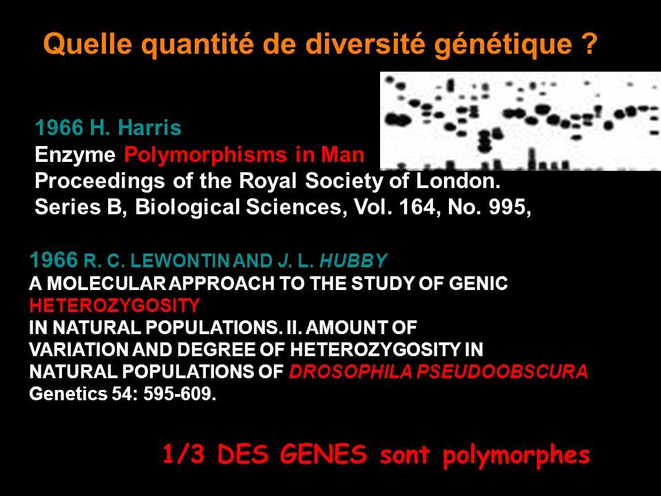 Quelle quantité de diversité génétique