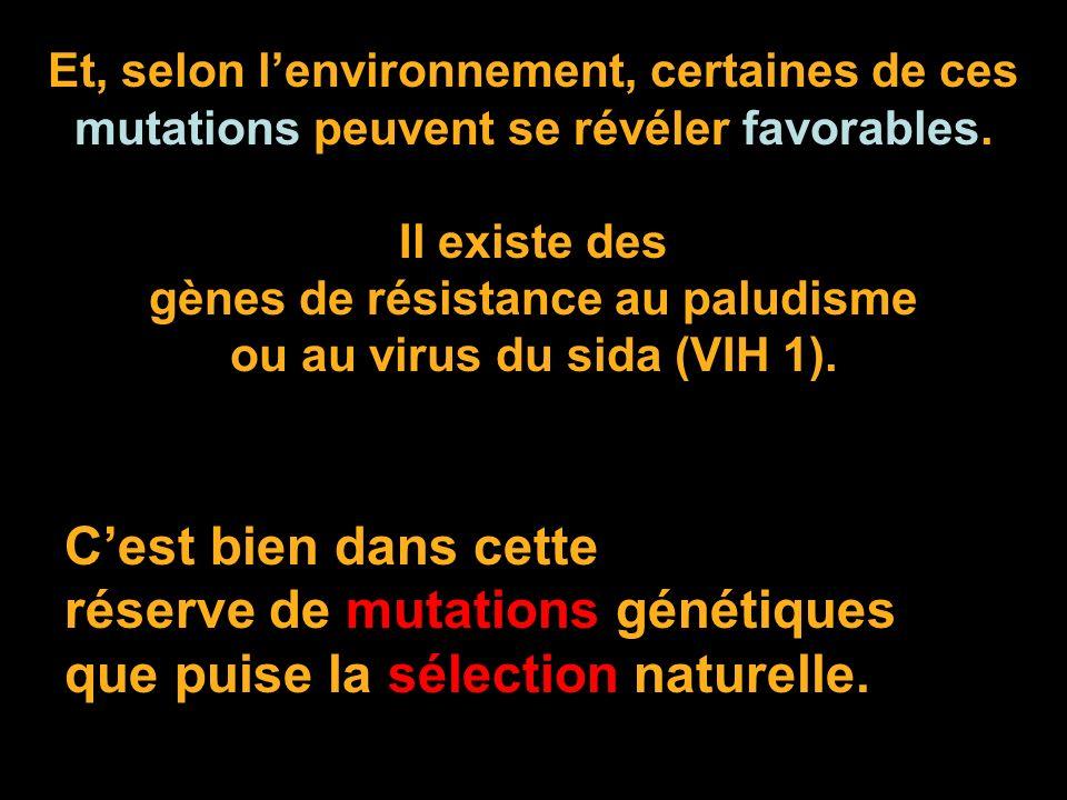 gènes de résistance au paludisme ou au virus du sida (VIH 1).