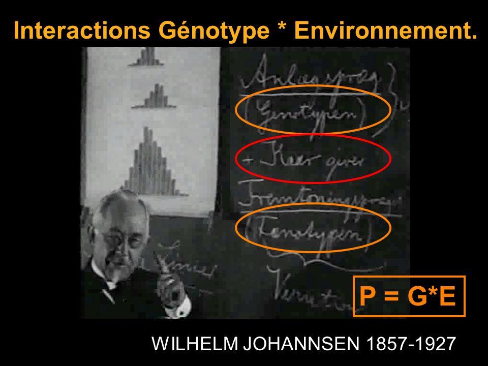 P = G*E Interactions Génotype * Environnement.