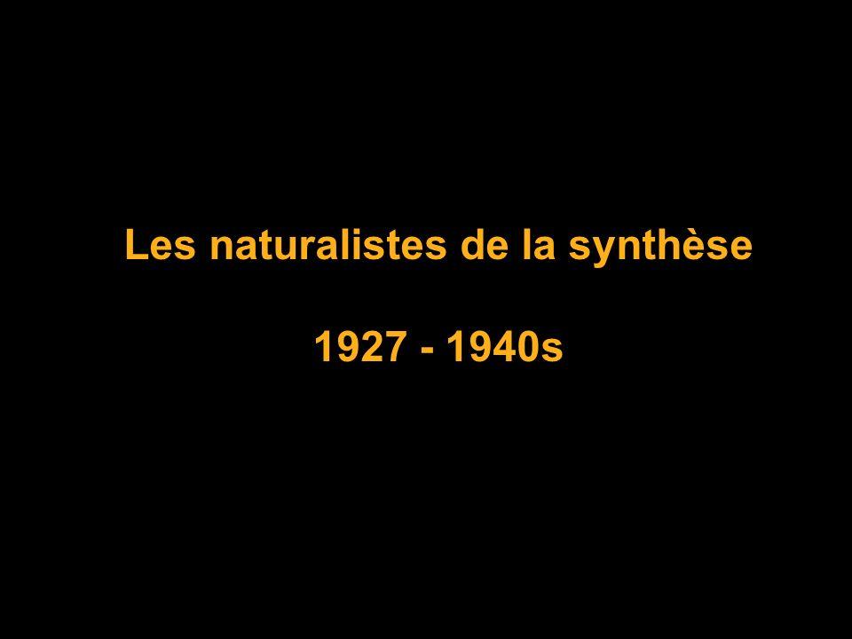 Les naturalistes de la synthèse