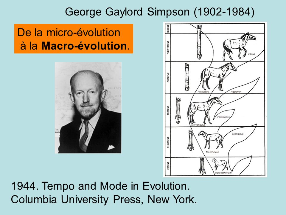 George Gaylord Simpson (1902-1984)