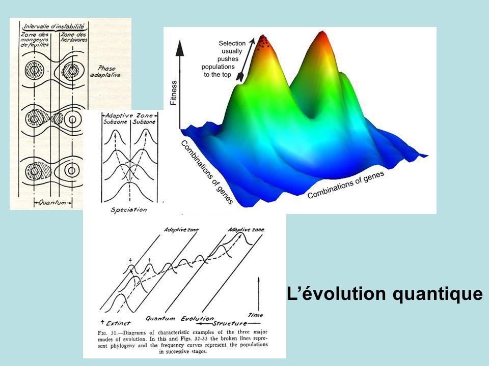 L'évolution quantique