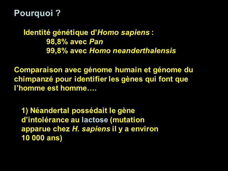 Pourquoi Identité génétique d'Homo sapiens : 98,8% avec Pan