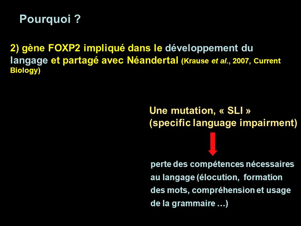 Pourquoi 2) gène FOXP2 impliqué dans le développement du langage et partagé avec Néandertal (Krause et al., 2007, Current Biology)