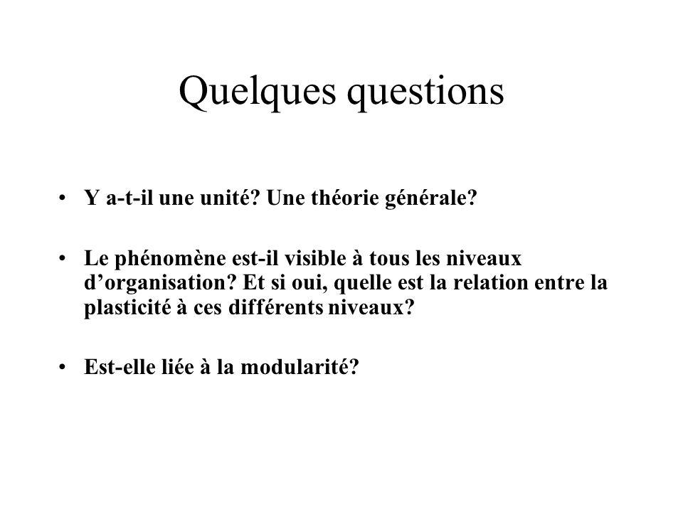 Quelques questions Y a-t-il une unité Une théorie générale