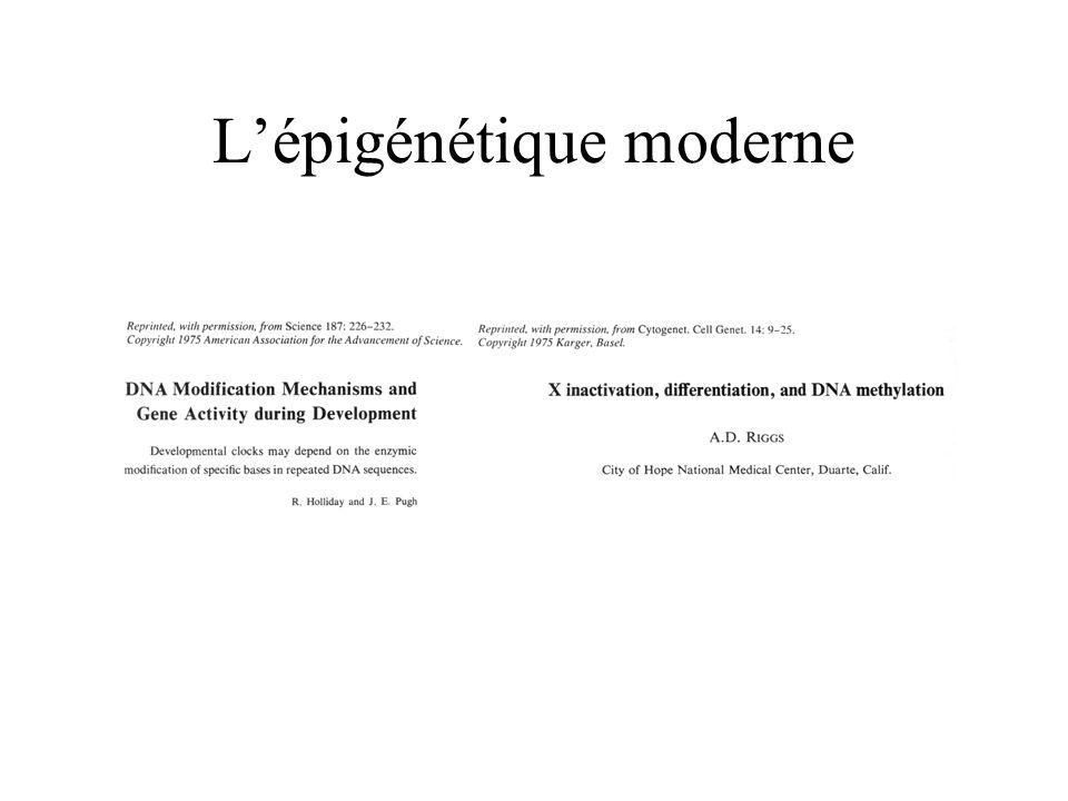 L'épigénétique moderne