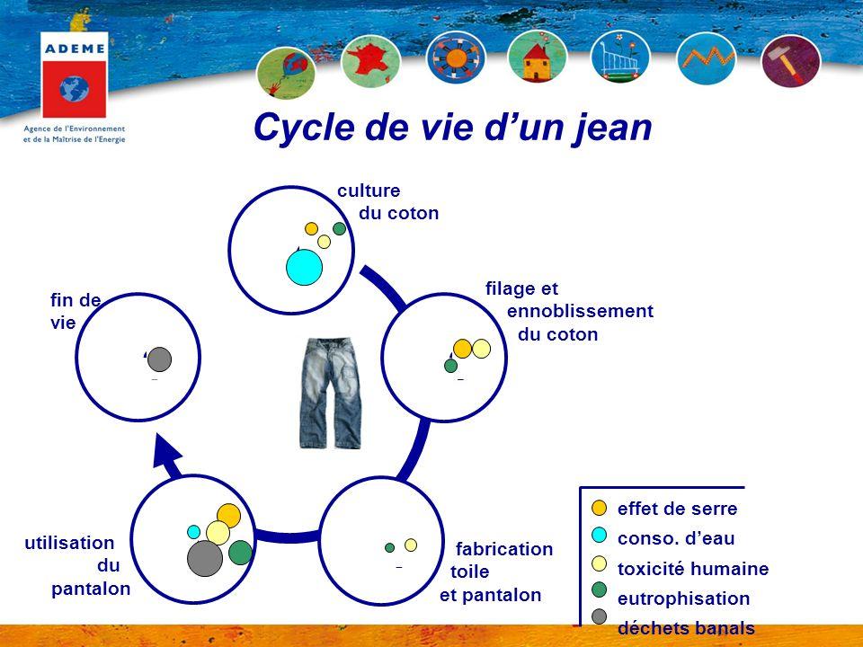 Cycle de vie d'un jean culture du coton fin de vie filage et