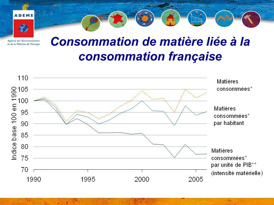 Consommation de matière liée à la consommation française