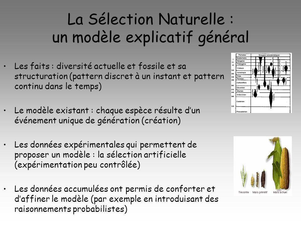 La Sélection Naturelle : un modèle explicatif général