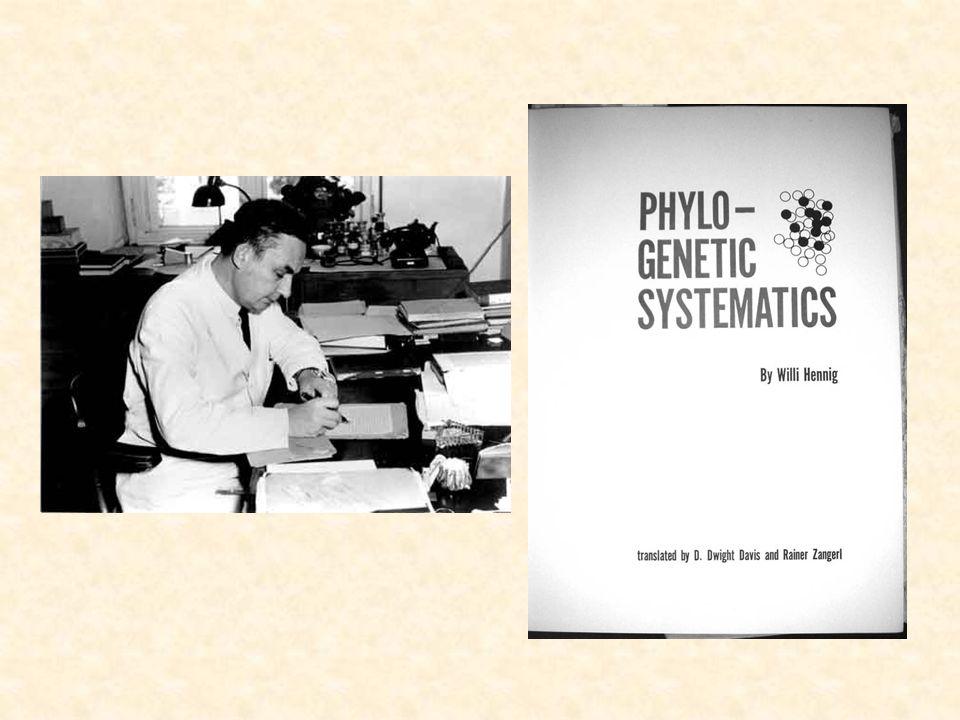 Hennig phylogenetic systematics