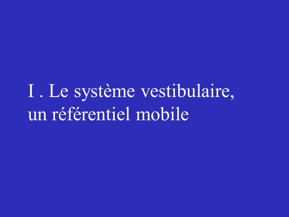I . Le système vestibulaire,