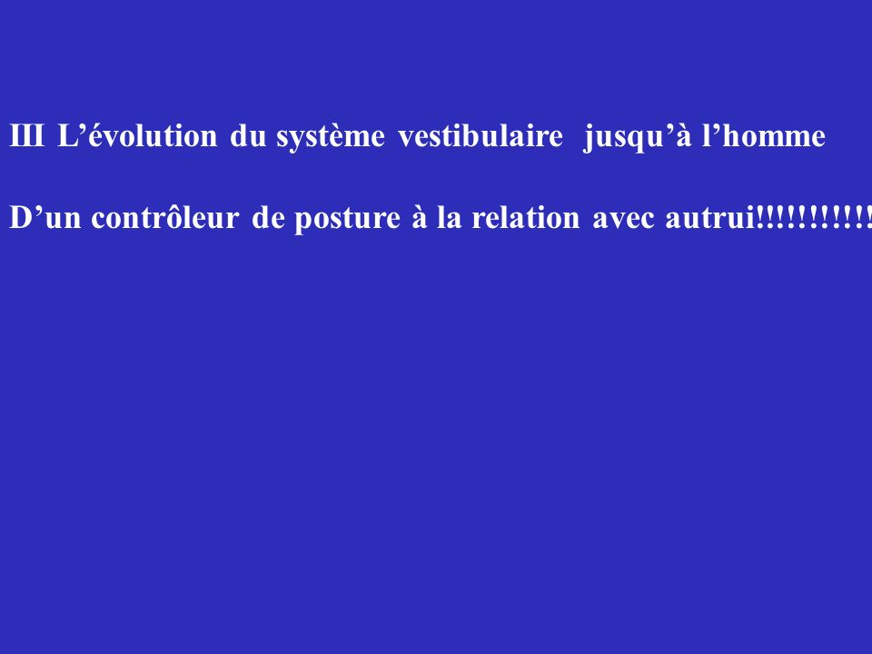 III L'évolution du système vestibulaire jusqu'à l'homme