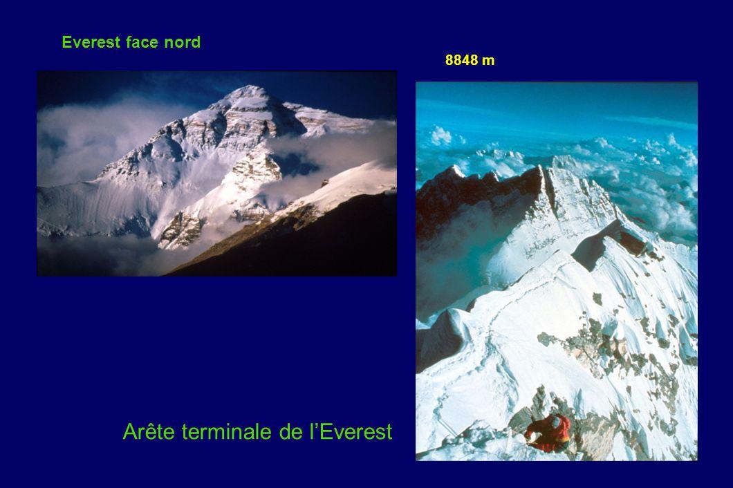 Arête terminale de l'Everest