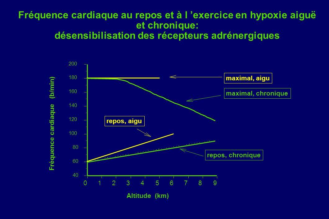 Fréquence cardiaque au repos et à l 'exercice en hypoxie aiguë et chronique: désensibilisation des récepteurs adrénergiques