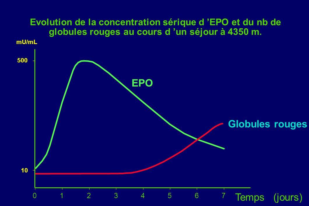 EPO Globules rouges Temps (jours)