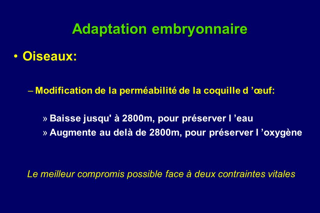 Adaptation embryonnaire