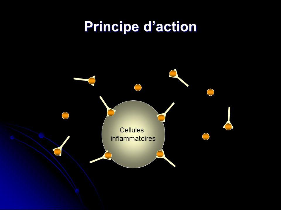Principe d'action Cellules inflammatoires