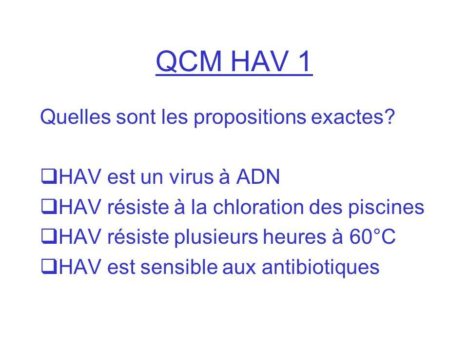QCM HAV 1 Quelles sont les propositions exactes