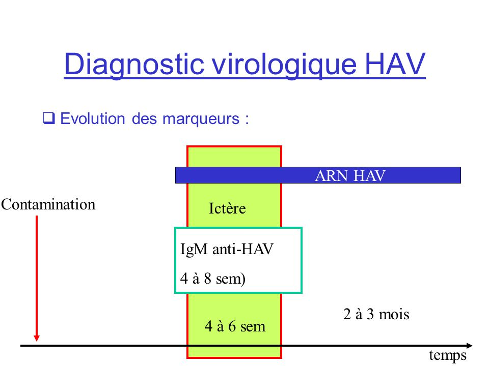 Diagnostic virologique HAV