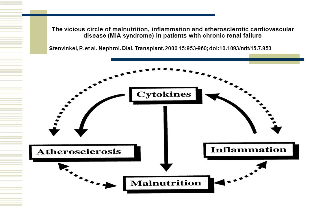 The vicious circle of malnutrition, inflammation and atherosclerotic cardiovascular disease (MIA syndrome) in patients with chronic renal failure