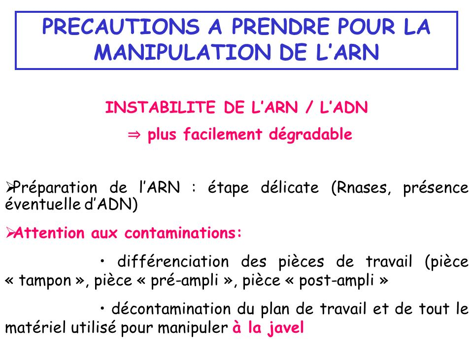 PRECAUTIONS A PRENDRE POUR LA MANIPULATION DE L'ARN