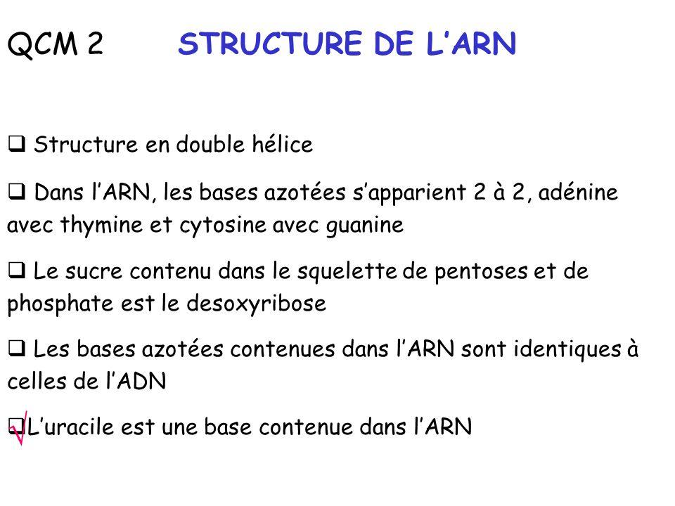 √ QCM 2 STRUCTURE DE L'ARN Structure en double hélice