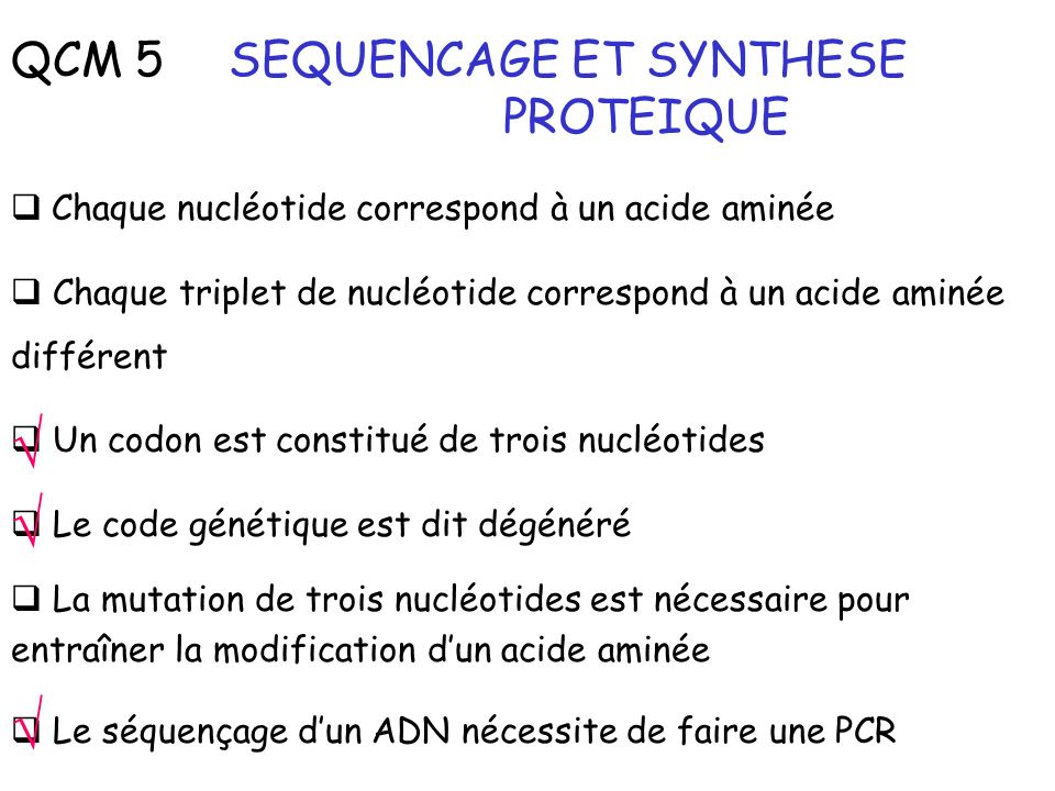 √ √ √ QCM 5 SEQUENCAGE ET SYNTHESE PROTEIQUE