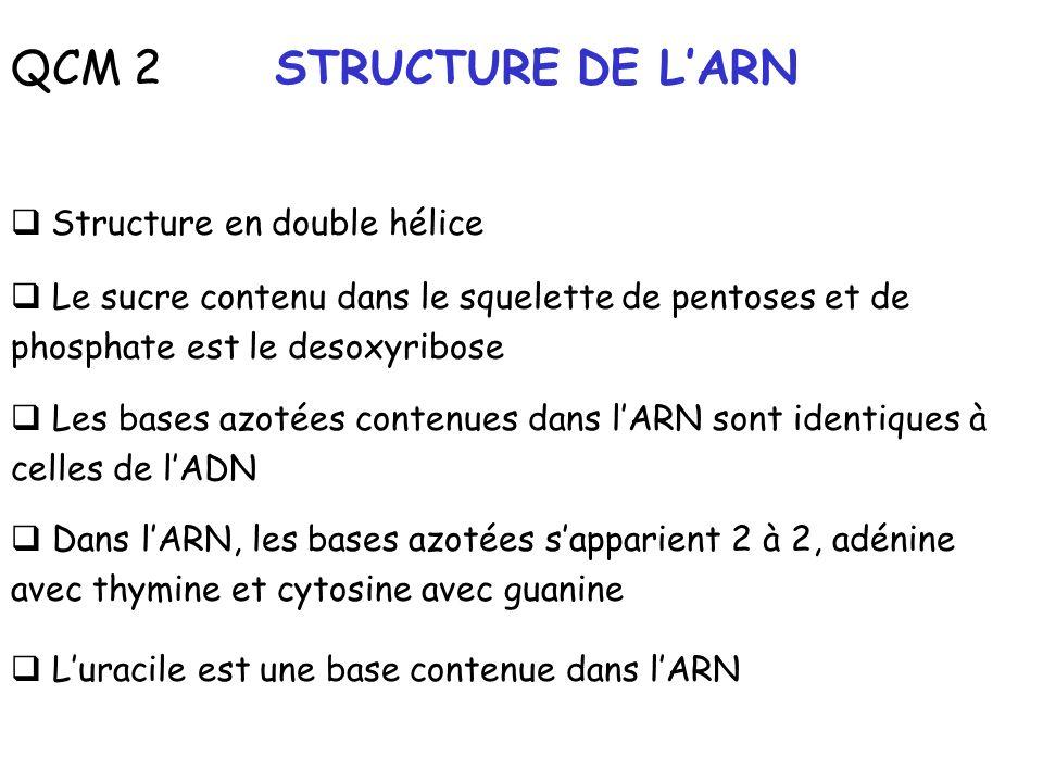 QCM 2 STRUCTURE DE L'ARN Structure en double hélice