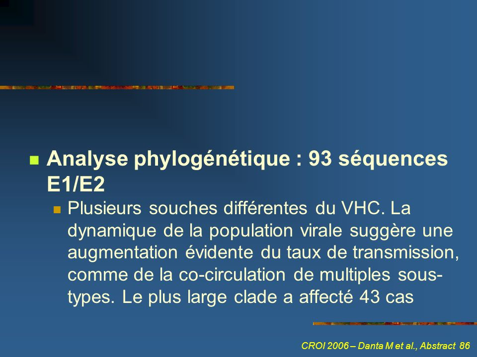 Analyse phylogénétique : 93 séquences E1/E2