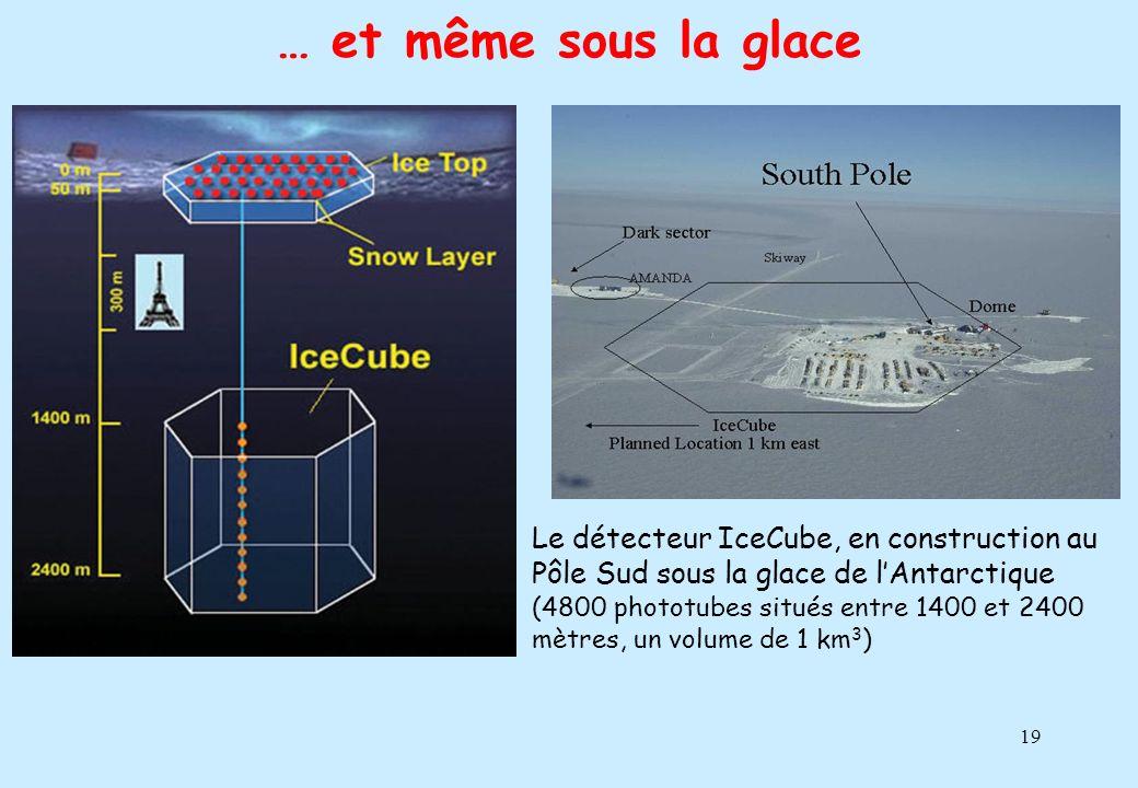 … et même sous la glace
