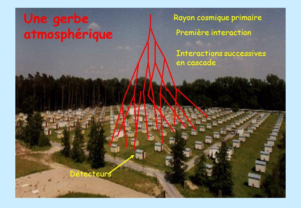 Une gerbe atmosphérique Rayon cosmique primaire Première interaction